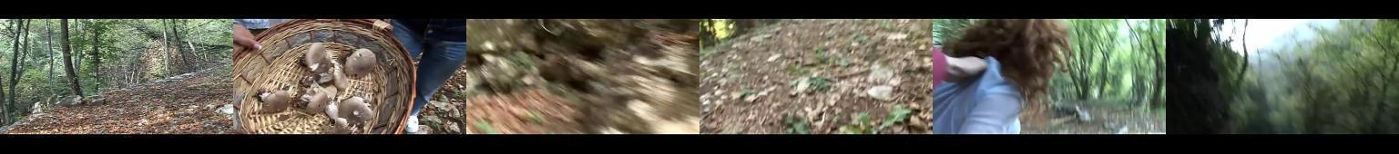 Starsza kobita spotkała w lesie gwałciciela